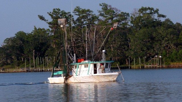 A shrimper coming back from the Gulf of Mexico